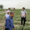 Visit of Chinese at Pirowal Farm