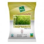 Thiophanate 400gm